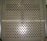Strato di perforazione dell'acciaio inossidabile per la lamiera sottile perforata scanalata filtri dello schermo