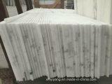 Interior BookmatchのためのパンダWhite Marble Tiles