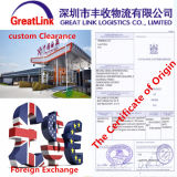 De betrouwbare Agent van de Logistiek van Shanghai tot New York, de V.S.