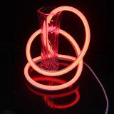 Im Freiendekoration RGB-LED Neonfor mit IP65