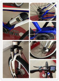 Couple central vélo électrique de batterie de bouteille de 26 pouces, E-Vélo de la montagne 250W