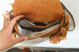 2016人の新しい方法ふさの女性美しいハンドバッグ