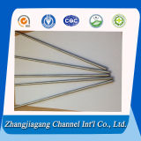 20mm Diameter Stainless Steel Tube para Hot Sale