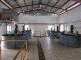Competitivo linea completa di olio vegetale raffineria