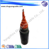 Cable de Lszh/Fr/Fireproof/Flexible/XLPE/PVC/PE/Armored/Screened/Control