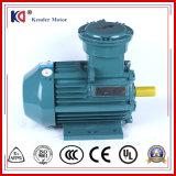 Wechselstrommotor/elektrischer explosionssicherer Motor mit großer Geschwindigkeit