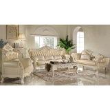 Ledernes Sofa für Wohnzimmer Furniture (512A)