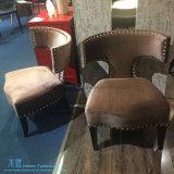 Cadeira moderna do lazer da sala de visitas para o hotel (DW-2125C)