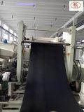 On fonctionnent la chaîne de production intérieure d'extrudeuse de feuille des véhicules