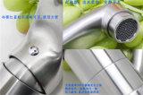 Misturador da cozinha & Faucet à moda Ab101c