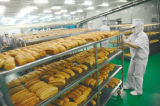 Forno de 32 bandejas para a fábrica do pão