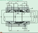 다중 봄 표준 기계적 밀봉 (HBB803)