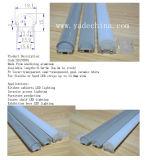 Espulsione di alluminio per il profilo di alluminio di plastica opalino di Coverd LED dell'armadio da cucina con le protezioni di estremità delle clip accessorie