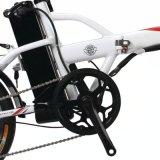 Motor exportado V-Freno de F&R que dobla la bici eléctrica (LN16F01)