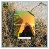 Verde esmeralda polarizado Tac de la lente