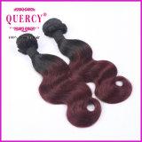Deux le son Ombre a coloré l'armure de cheveu empaquette 10-30 pouces de cheveux humains de prix de gros d'extensions