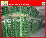 中国の経済的なマルチ意図された人工的な草