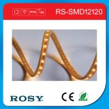 Nueva luz de tira flexible del premio SMD LED de China Guangzhou