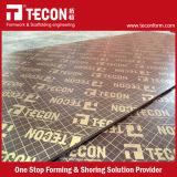 Tecon 1250*2500mmのフィルムは合板に直面した