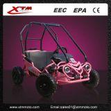 卸し売り中国の子供のレンタルピンクの変速機小型MotoはKart行く