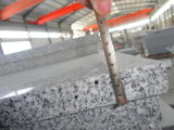 Preiswertes Natural Grey Granite für Tile, Slabs, Countertops