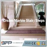 Scale di pietra di marmo naturali eleganti/punti/Step&Riser/Treads per Ineterior & esterno