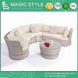 クッションおよび枕屋外の柳細工のソファーの藤の余暇のソファーのテラスの家具が付いている庭の組合せのソファー