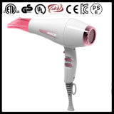 2200W Salon Professional Electric Blow Dryer (001)