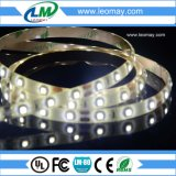 luz de tira flexible blanca fresca No-Impermeable de 12V 300LEDs SMD3528 IP20 LED