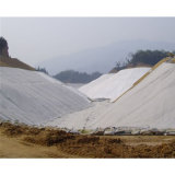 geotextil tejido multifilamento de 180kn Pet/PP (MW600)