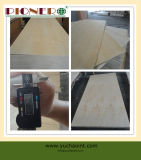 Het witte Triplex van de Berk voor Verpakking Furniture002