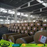 Papel de madeira da folha do revestimento de grão para o assoalho, MDF, HPL