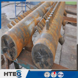 Zuverlässigkeits-kompakte Größen-Dampfkessel-Überhitzer-Vorsatz mit guter Qualität