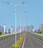 luz de rua solar do diodo emissor de luz de 6m com a lâmpada do diodo emissor de luz 30W