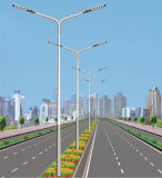 6m Solar-LED Straßenlaternemit 30W LED Lampe