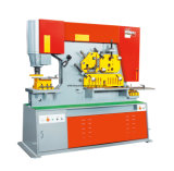 (63T) imprensa de corte Q35y-16 combinada hidráulica