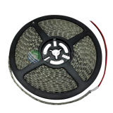 Luz de tira 120LEDs/M do diodo emissor de luz do brilho SMD3528 de Hight 24VDC
