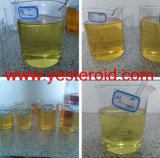 Sperrig sein und Cutting Cycle Steroid Trenbolone Enanthate (parabolan) 10161-33-8