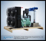 3000kg Fresh Water Dry Flake Ice Machine mit Ice Bin (KP30)