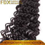 Lockiges Holding Deep Wave indisches Menschenhaar mit Closure
