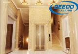 elevatore economizzatore d'energia verde della casa della villa 250~400kg