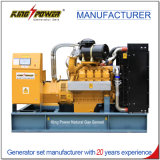 fournisseur silencieux de générateur du gaz 50kw-300kw naturel avec le certificat de la CE