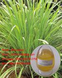 Olie van de Citronellaolie van 100% Natuurlijke Zuivere 8000-29-1