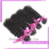 Alta qualidade com o cabelo humano do melhor Virgin do preço profundamente Curly