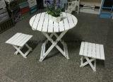 يطوي حديقة طاولة وكرسي تثبيت ([م-إكس3061])