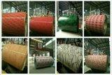 Катушки стали конструкции PPGI зерна кирпича Brick11/Pre-Painted покрынные цветом/покрашенное зерно PPGI/PPGI PPGI/Brick