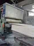 Madera contrachapada antirresbaladiza hecha frente película antirresbaladiza de la madera contrachapada concreta de la forma de la madera contrachapada