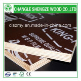 熱いSale 18mm Printed Logo Film Faced Plywood