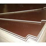La película de Brown de la base del álamo/del abedul/de la madera dura hizo frente a la madera contrachapada para la construcción (HBB202)