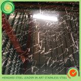 Strato decorativo dell'acciaio inossidabile 316 di progetto di funzionamento del metallo 304